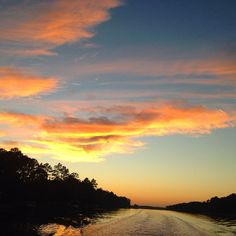 Travel: Alabama's Gulf Coast -- a different kind of beach   NJ.com