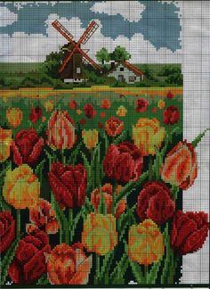Gallery.ru / Фото #47 - тюльпаны - zhivushaya