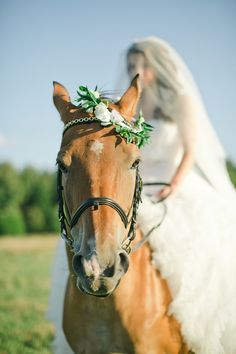 Equestrian themed wedding inspiration and bridal session. Bridal portraits with a horse. Horse Wedding Photos, Horse Photos, Wedding Pictures, Bridal Session, Bridal Shoot, Cowgirl Wedding, Farm Wedding, Bridal Portraits, Dream Wedding