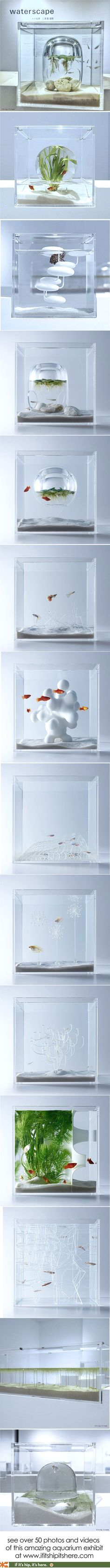 The Waterscape Aquarium Exhibit held at the Misawa Design Institute features a series of small architectural and artsy fish tanks designed by Hakura Misawa.