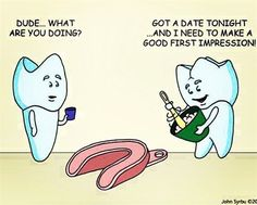 Bicuspid: Dude what are you doing?   Molar: Got a date tonight and I need to make a good first impression.