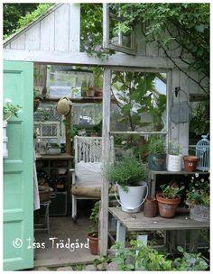 Abri de jardin bois VERTIGO SERRE | Greenhouses | Pinterest | Gardens