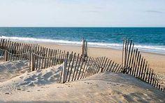 North Carolina Beaches   North Carolina's wild and unspoilt coast is one of the region's chief ...