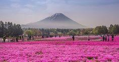 Αυτοί είναι 15 λόγοι για να επισκεφτείτε την Ιαπωνία!