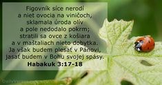 Habakuk 3:17-18 - DailyVerses.net 18th, Bible, Words, God, Word Of God, Biblia, The Bible