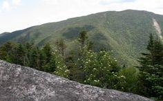 Vue sommet Colvin, Adirondacks, juin 2016 (Nippletop) Mountains, Usa, Nature, Upstate New York, Naturaleza, Nature Illustration, Off Grid, Bergen, U.s. States