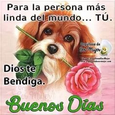 Good Morning Funny, Good Morning Good Night, Good Morning Images, Good Morning Quotes, Good Day, Spanish Greetings, Good Morning Inspiration, Love Wishes, Morning Messages