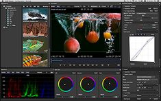 Sony Creative Software - RAW Viewer