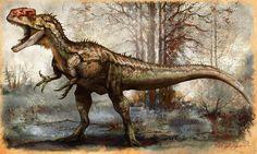 Monolophosaurus jiangi 5.5 m, 475 kg AGE Middle Jurassic. DISTRIBUTION AND FORMATION Northwest China; Wucaiwan.