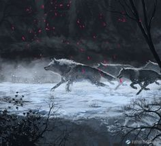 ArtStation - Game of Thrones Art 1 - Mid 2016 Works , Sebastian Rodriguez Anime Wolf, Fantasy Wolf, Fantasy Art, Fantasy Creatures, Mythical Creatures, Wolves And Women, Wolf Artwork, Wolf Pictures, Art Pictures
