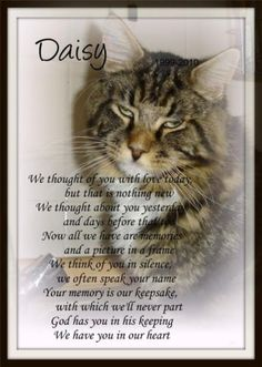 Beautiful pet memorial