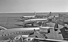 TWA Lockheed Constellations, and Pan Am Boeing 377 Stratocruisers were a common sight at San Francisco-International, circa Passenger Aircraft, Aviation Industry, Commercial Aircraft, Civil Aviation, Vintage Travel, Vintage Airline, Flyer, Air Travel, Air Festival