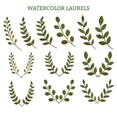 Laurel wreaths watercolor clipart vector