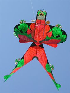 Kite Flying - freedom of the sky #sloggifreedom