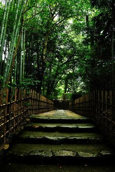 the approach to Ichijo-ji temple, Kyoto, Japan