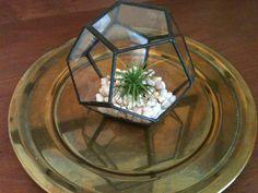 geometric small pentagon glass terrarium by ULIMADE
