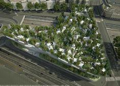 OXO Architectes - MILLE ARBRES