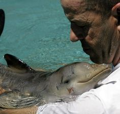 Baby dolphin giving a man a cuddle!!! cutest thing EVER.