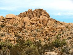 If you're coming to Joshua Tree National Park from the and don't have much time, Mastodon Loop Trail has old mines, great views, and cool rocks to climb. Joshua Tree National Park, National Parks, Uganda Kampala, Route 66 Road Trip, Yucca Valley, Cool Rocks, Great View, Mount Rushmore