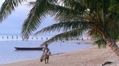 Madagascar. Amazing!