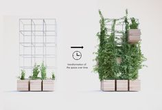 Home Cafe by Penda