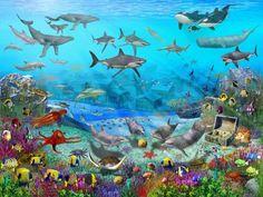 Onderwater leven in de zee....
