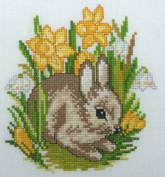 A pretty baby rabbit among flowers, this makes a lovely Easter picture.