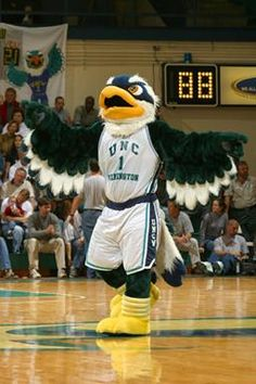 University of North Carolina - Wilmington Seahawks. Sammy the Seahawk. The nickname was chosen because of the popularity of the Iowa Seahawks, a pre-fight service team coached by former University of Minnesota head coach Bernie Berman. Iowa was known for its excellent athletic teams at the time, and the moniker fit then Wilmington College well because of its proximity to the water.