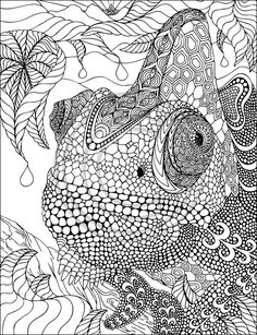 Lovely Chamelon Zentangle by Phil Lewis Art – Coloring Books for Adults  | followpics.co