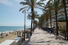 "Lovely: ""Palm Tree #Shadows along the #beach in #Marbella #Spain"" #FriFotos by @purplepassport"