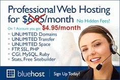 $3.95/month for Your Professional Business Webhosting.