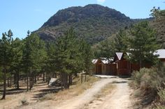 Cabañas, bungalows , tiendas de campaña y actividades deportivas en Camping Las Cabañas (Teruel).