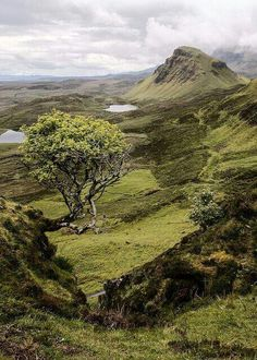 Scotland ~ Highlands