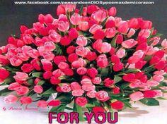 pensando en DIOS y poemas de mi corazon : la paz del sen'or reyne en vuestros corazones feli...