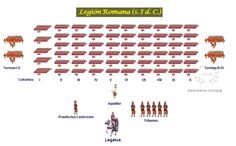 Legiones Romanas Rome History, Ancient History, Lego Roman, Military Tactics, Roman Legion, Ancient Rome, Roman Empire, Military History, Dungeons And Dragons