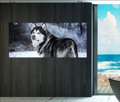 Alaskan Malamute wall art print prints on canvas by CanvasConquest