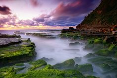 turimetta beach, northern beaches, sydney, NSW. australia