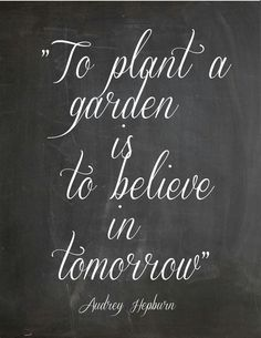 Wise words #optimisticgardener