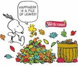 HAVE STUDENTS WRITE THEIR OWN HAPPINESS IS...STATEMENTS! Eureka Peanuts Happiness is a Pile of Leaves Bulletin Board Set, 26 Reusable Punch Out Pieces