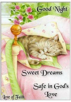 Good Night Sleep Well, Good Night Thoughts, Good Night Prayer, Cute Good Night, Good Night Blessings, Sweet Night, Good Night Sweet Dreams, Good Night Image, Good Morning Good Night