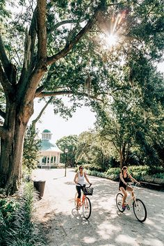 Designed by the famous Olmsted brothers, Hampton Park is Charleston's largest green space. (Photo by Peter Frank Edwards)
