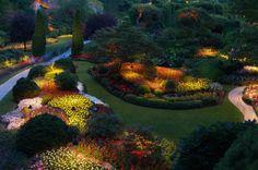 Aprende a crear jardines que te sirvan para tus fiestas: Ilumina las plantas en el jardín