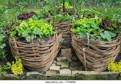 """Résultat de recherche dimages pour """"keyhole garden"""""""