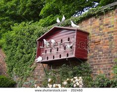 red dovecote - This might be a solution to the storm gutters:) being crowded with doves.