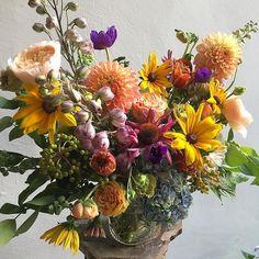 HeatWavers🌞👌🏻. #happyflorist #flowers #flowermagic #summer2017 #thepetalworkshop #YourDayJustGotGreat