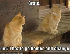 oh Grate! :P