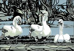 By the Water's Edge (Juvenile Mute Swans) Max Angus, Tasmanian Artist, Linocut