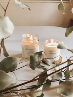 Vellabox // The Artisan Candle Subscription Box Scented Candles, Candle Jars, Candle Labels, Photo Candles, Luxury Candles, Beige Aesthetic, Candle Making, Aesthetic Pictures, Blog