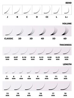 Eyelash extensions, the table, the amount of the length of thickness curve, vector illustration Illustration , Perfect Eyelashes, Natural Fake Eyelashes, Thicker Eyelashes, Longer Eyelashes, Eyelash Extensions Salons, Extensions Hair, Eyelash Studio, Eyelash Technician, Lash Quotes