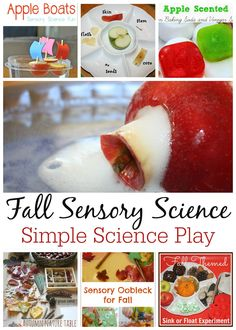 There are so many wonderful things to explore during the Fall season. The sights, the smells, the changes! Enjoy simple Fall science for play and learning!